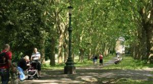 St Georges park 09 6